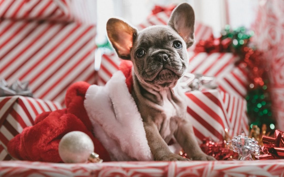 16 Tips on Reducing Holiday Stress & How to do Smart Holiday Shopping